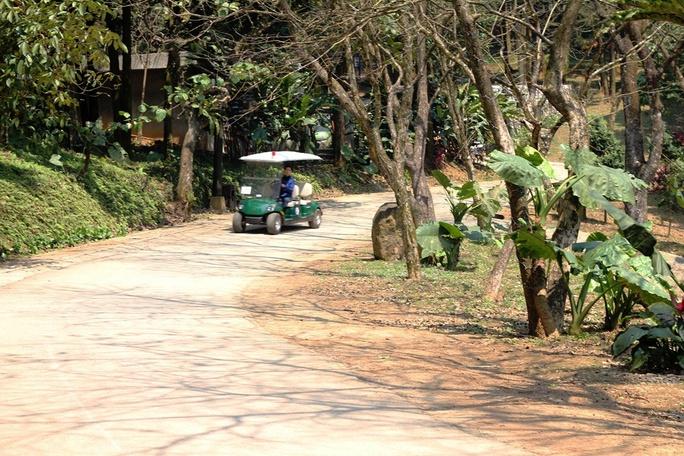 Nhiều xe điện hoạt động trong khu resort