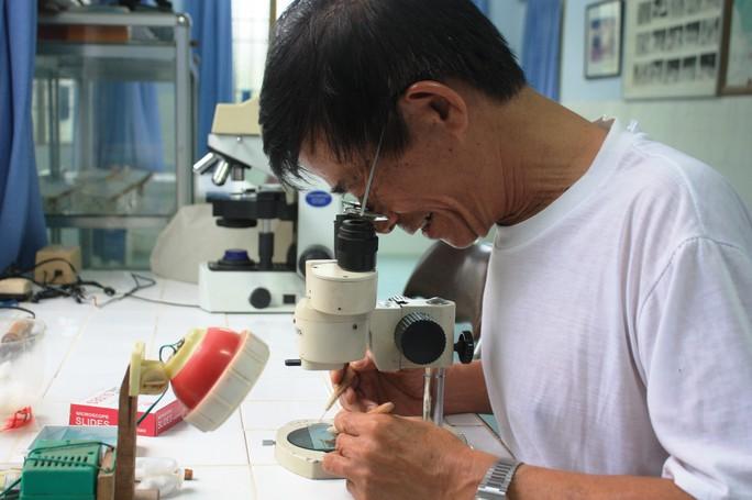 Nghiên cứu muỗi mang tác nhân Wolbachia ức chế được virus Dengeu kỳ vọng ức chế được Zika