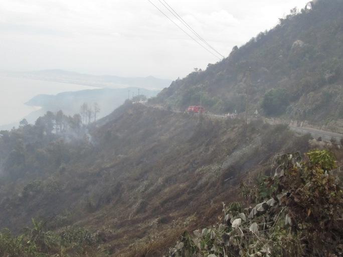 Nhiều ha rừng bị cháy