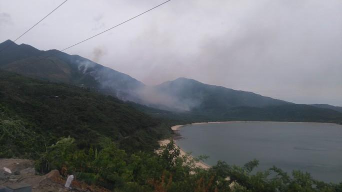 Khu vực xảy ra cháy chủ yếu là rừng trồng lâu năm