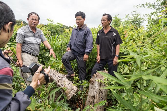 Trưởng thôn Giang Đông (thứ 2 từ phải sang) khẳng định vị trí phóng viên VTV bảo ông Vừ Dũ Dinh (bìa phải) đốn hạ cây để quay phim là nương rẫy chứ không phải là rừng. Ảnh: Như Phú