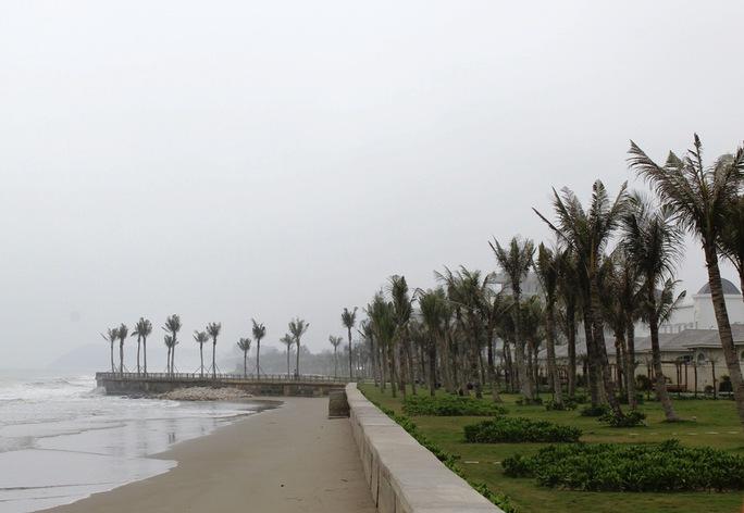 Khu vực rừng phòng hộ, đất rừng phòng hộ sát biển bị FLC xóa sổ để xây khu nghỉ dưỡng
