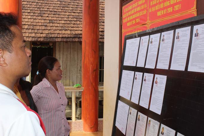 Cử tri xem tiểu sử các ứng cử viên trước khi bỏ phiếu