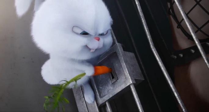 Trùm thỏ trong phim