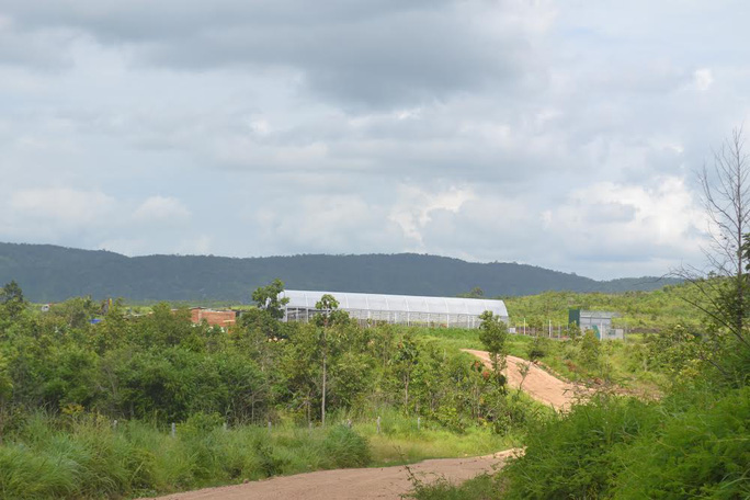 247 ha đất dự án của Công ty Trường Thịnh bị người dân lấn chiếm