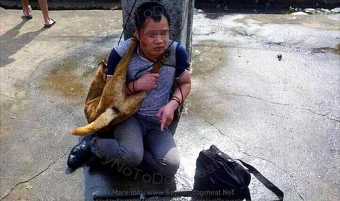 Cách đó vài hôm, một tên trộm chó khác cũng bị đánh, trói suốt 9 giờ. Ảnh: Saynotodogmeat
