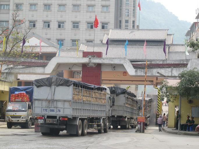 Xe chở nông sản từ phía Nam ra cửa khẩu Tân Thanh (tỉnh Lạng Sơn) để xuất khẩu qua Trung Quốc