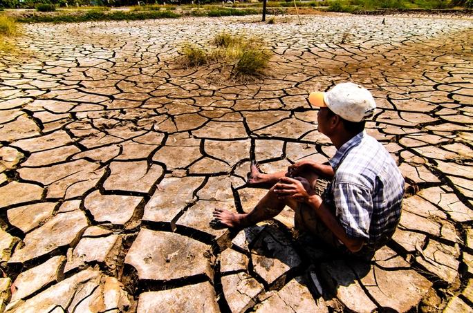 Hạn, mặn đã làm cho cuộc sống người dân vùng U Minh Thượng thêm phần khốn khó.