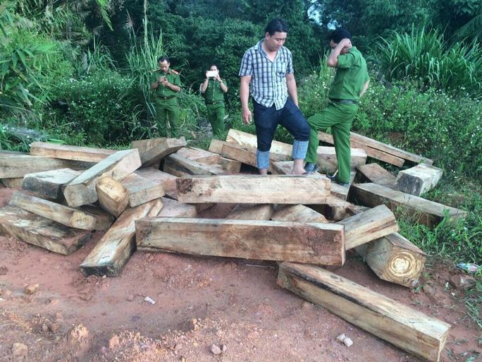 Công an phát hiện nhiều bãi tập kết gỗ gần cơ quan chức năng
