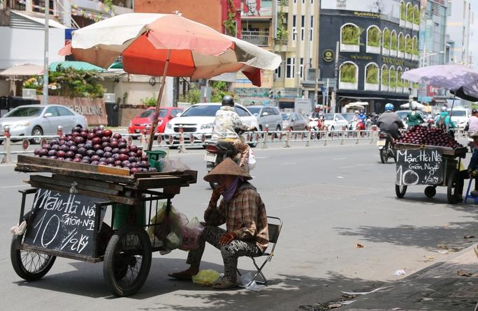 Mận Trung Quốc treo bảng mận Hà Nội bán khắp đường phố Sài Gòn