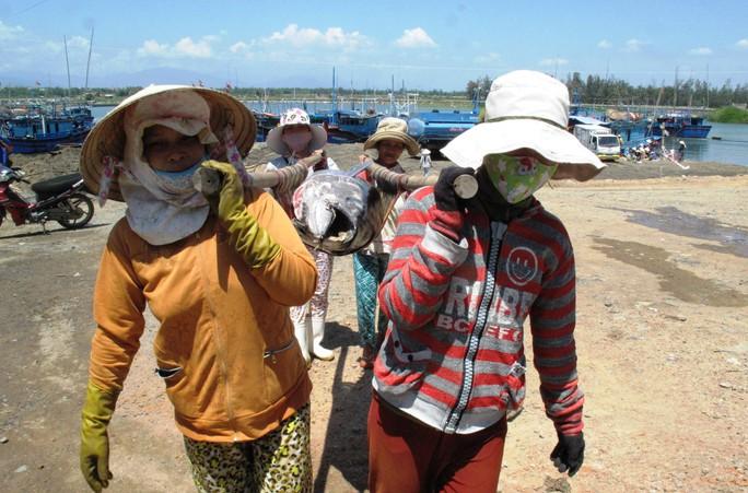 Gía cá hạ, đời sống của nhiều bộ phận làm dịch vụ ở bến cá cũng khó khăn