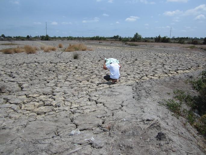 Tại ĐBSCL, mặc dù những ngày qua, một số tỉnh trong khu vực có xuất hiện mưa nhưng vẫn không làm cho tình trạng hạn, mặn trở nên dịu đi. Ngược lại, mưa nhỏ khiến cho nắng hạn trở nên gay gắt hơn. Theo dự báo, những ngày giữa tháng 4 thì tình hình hạn, mặn ở vùng sông nước Cửu Long càng diễn ra phức tạp, diễn biến khó lường.