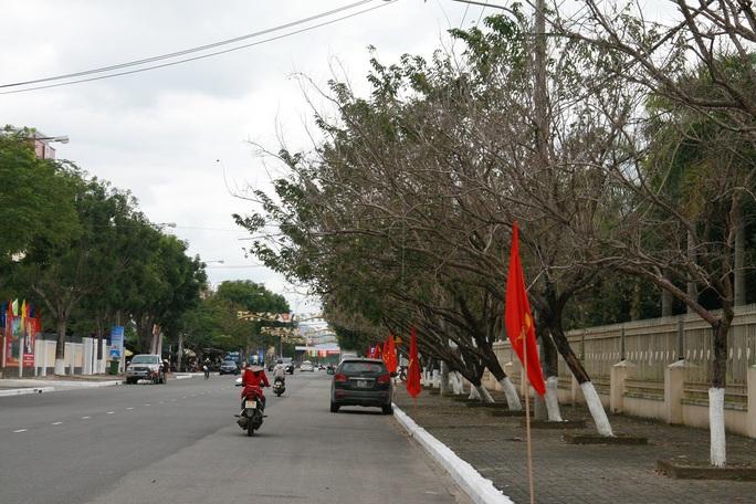 Một góc của đường Trần Hưng Đạo - TP Tam Kỳ