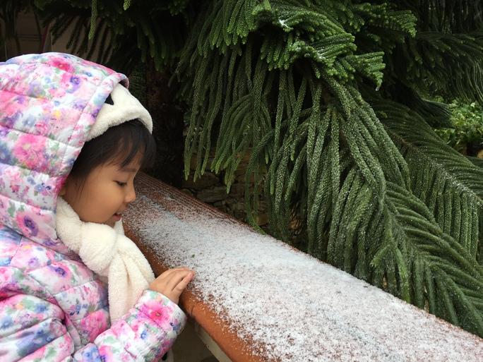 Tầm hơn 10 giờ sáng ngày 24-1, tại thị trấn Tam Đảo xuất hiện mưa băng tuyết. Hạt mưa tuyết nhỏ li ti, cỡ hạt đường cát. Thời gian tuyết rơi lây phây là khoảng nửa tiếng và nhiệt độ ở mức -0,5 độ C. Ảnh: Thanh Tú