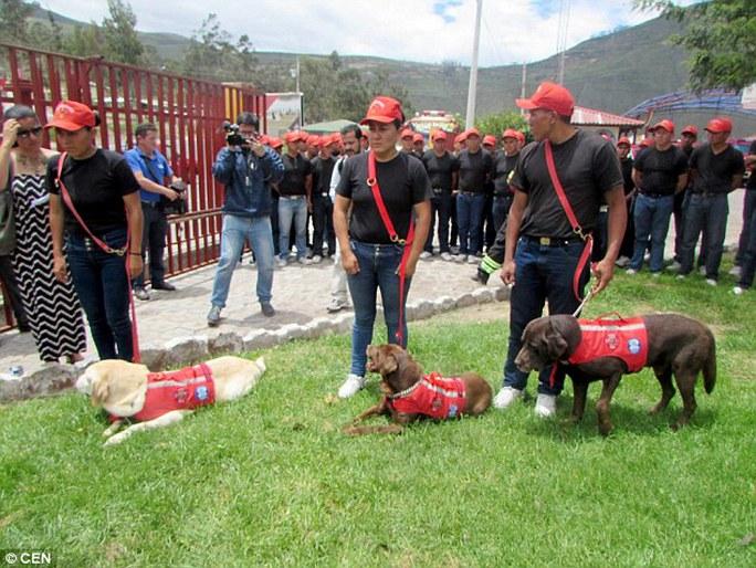 Đám tang của Dayko được tổ chức trọng thể với sự tham gia của lực lượng cứu hỏa. Ảnh: CEN