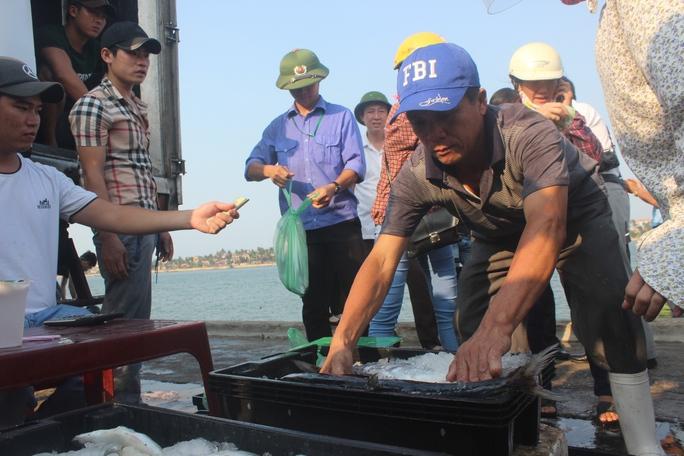 Ngư dân Quảng Bình trở về sau chuyến biển Ảnh: MINH TUẤN