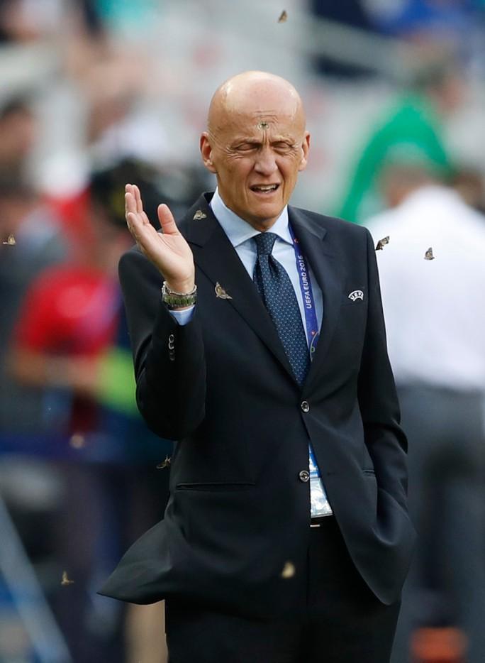 Cựu trọng tài Pierluigi Collina bị bướm đêm quấy rối
