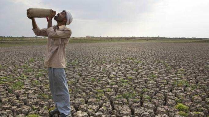 Hạn hán nghiêm trọng khiến nhiều người dân Ấn Độ rơi vào cảnh khốn cùng Ảnh: AP
