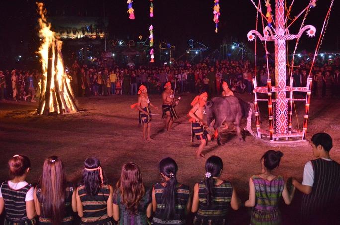 Đông đảo du khách chứng kiến cảnh con trâu vật lộn trong đau đớn tại một lễ đâm trâu ở Tây Nguyên