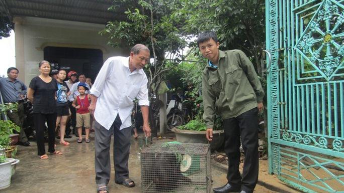 Khỉ mặt đỏ quý hiếm được ông Phạm Văn Hược bàn giao để cứu hộ, bảo tồn Ảnh: Nguyễn Kiên