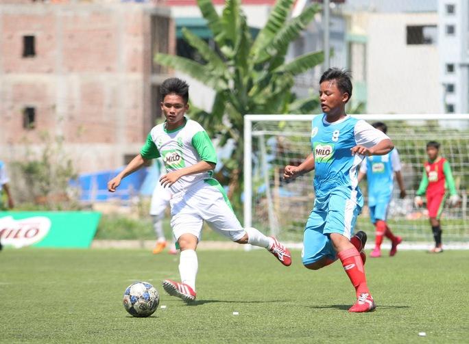 TP HCM (xanh) - Hà Nội