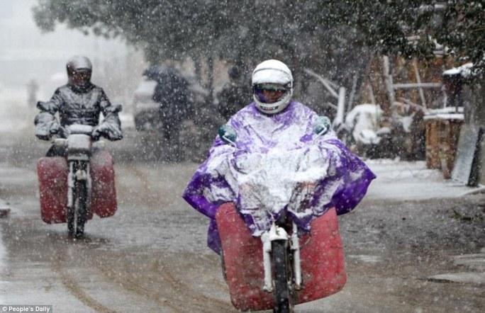 Người dân Giang Tây chạy xe trong mưa tuyết. Ảnh: Nhân dân nhật báo
