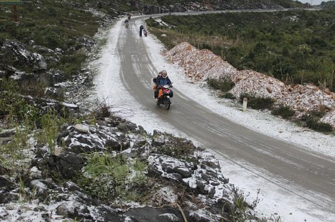 Trên cao nguyên đá Đồng Văn (Hà Giang), tuyết cũng phủ trắng dọc hai bên đường và trên các nhành cây, ngọn cỏ