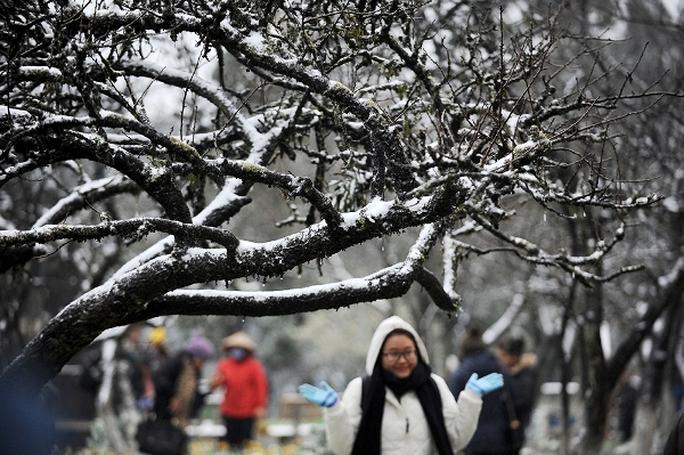 Rất nhiều du khách lên Sa Pa ngắm mưa tuyết khi nơi đây nhiệt độ xuống thấp kỷ lục -4 độ C - Ảnh: CTV