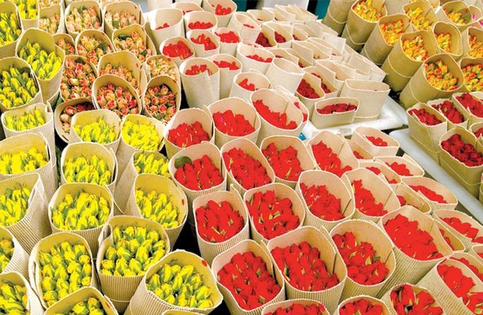 Xuất khẩu hoa tươi: Dễ hay khó?