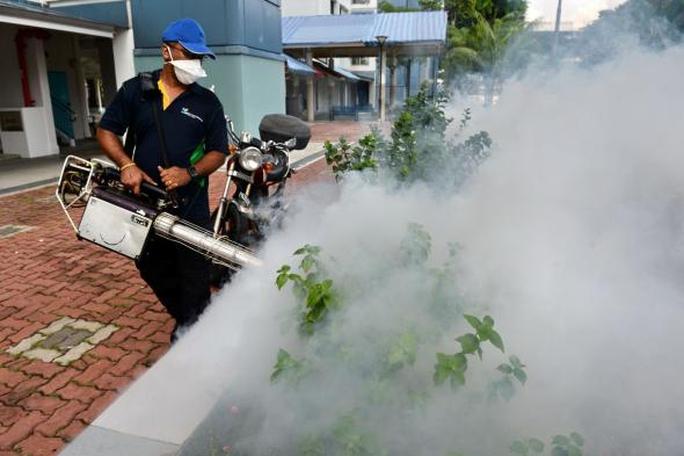 Singapore đang khẩn trương ngăn chặn sự lây lan của virus Zika Ảnh: Straits Times