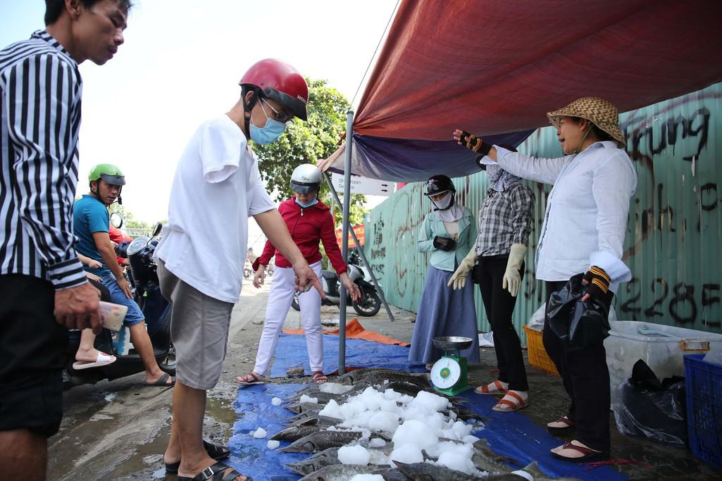 Người dân TP HCM chen nhau mua cá tầm bị ngộp nước - Ảnh 5.