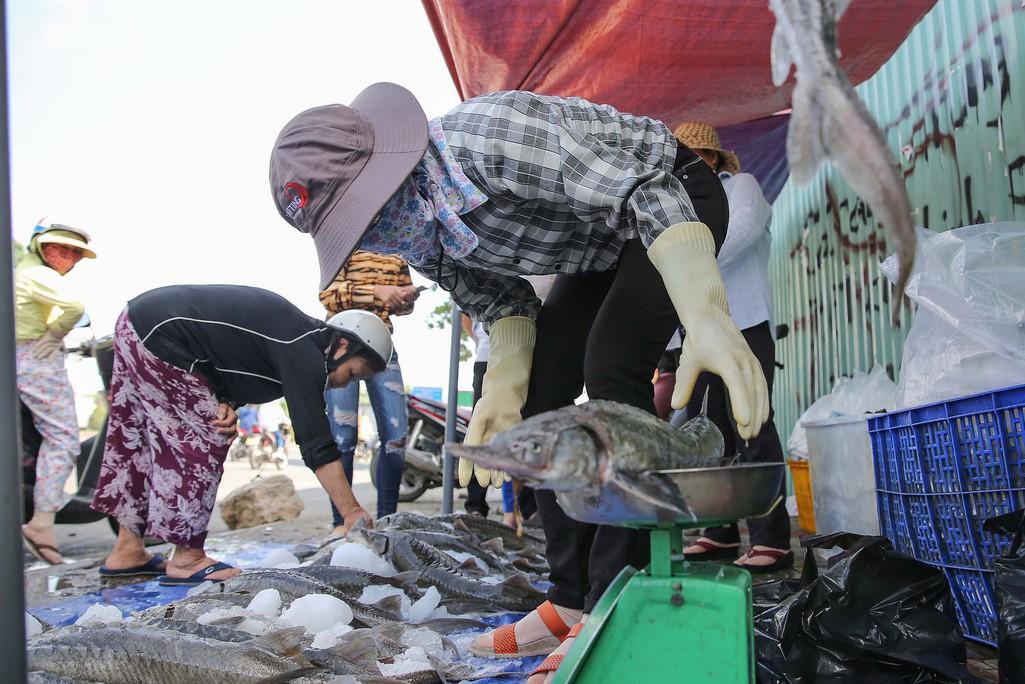 Người dân TP HCM chen nhau mua cá tầm bị ngộp nước - Ảnh 6.
