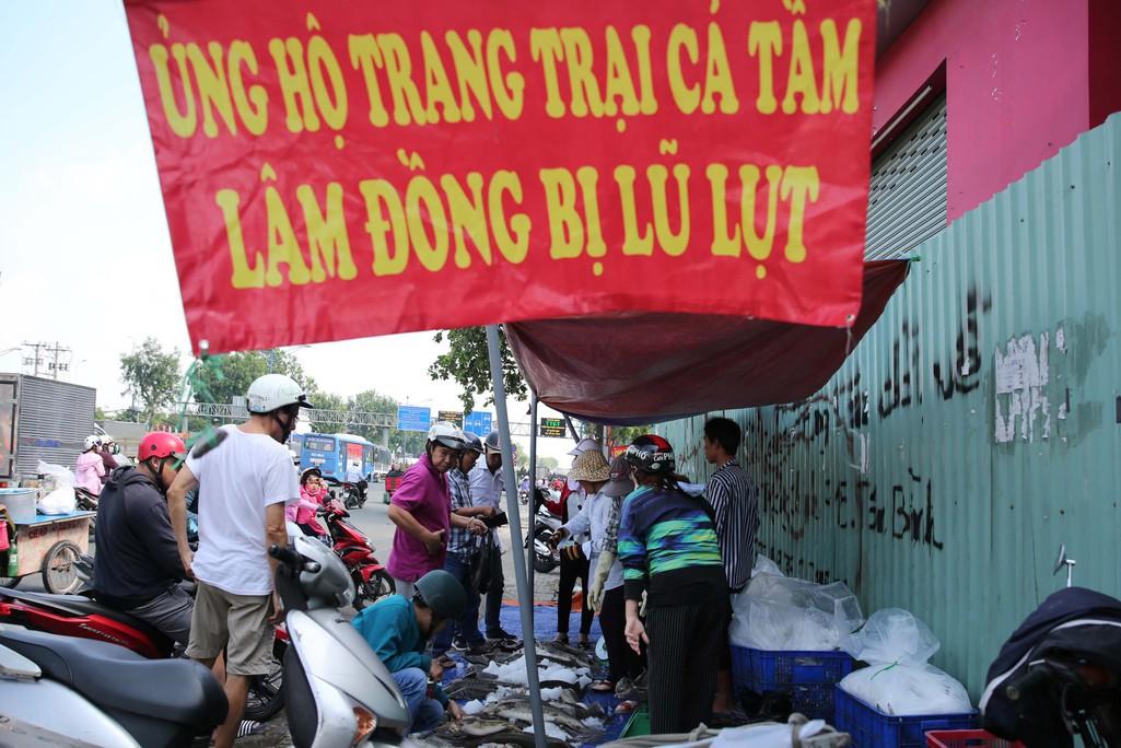 Người dân TP HCM chen nhau mua cá tầm bị ngộp nước - Ảnh 1.