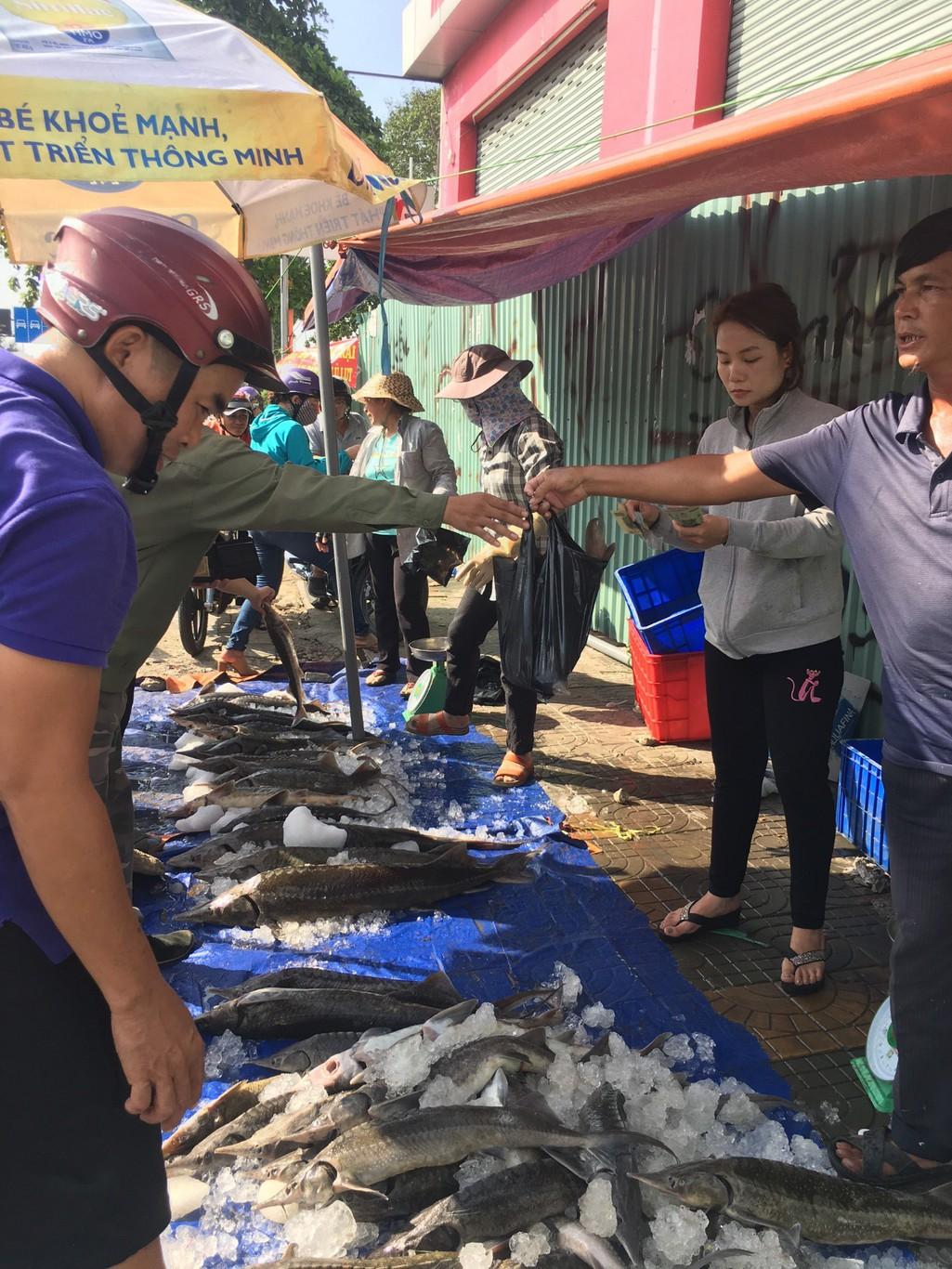 Người dân TP HCM chen nhau mua cá tầm bị ngộp nước - Ảnh 14.