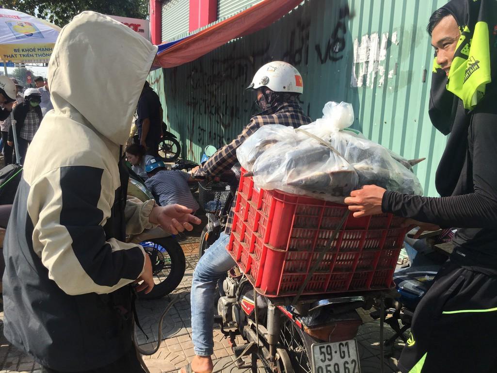 Người dân TP HCM chen nhau mua cá tầm bị ngộp nước - Ảnh 15.