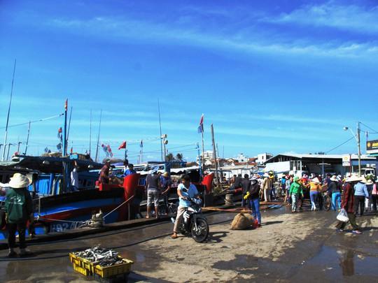 Hàng trăm người ra bến cá phường 6 đón lộc biển đầu năm