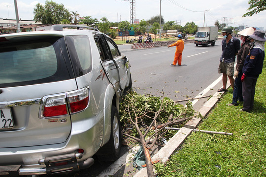 Cây xanh bị hư hại, đè bẹp sau vụ tai nạn