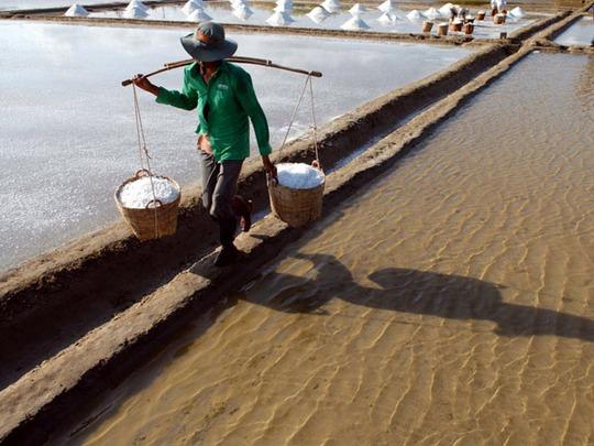 Những năm gần đây, để chất lượng muối càng cao và không bị vàng, nhiều diêm dân đã trải bạt cho ruộng muối thay vì làm muối trên nền đất.