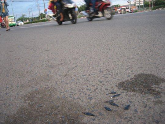 Nhiều người bị thủng ruột xe vì những mảnh sắt nhọn này
