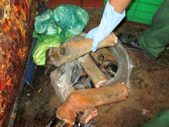 Chân trâu bò trước khi sơ chế
