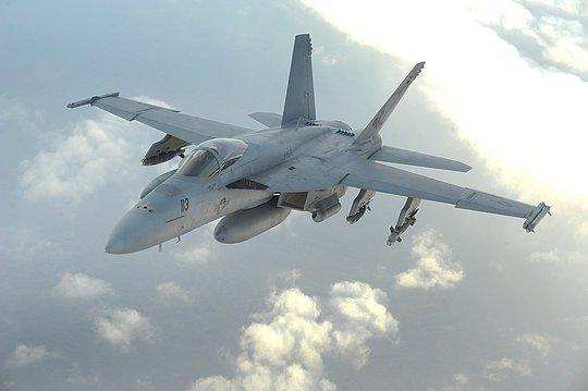Một chiếc F-18 Hornet. Ảnh: eag-enterprises.org