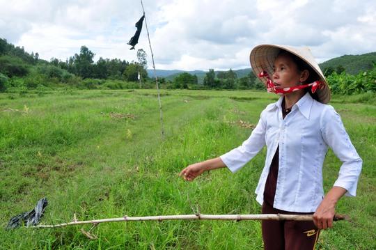 Chị Nguyễn Thị Cẩm Vân diễn tả lại hành động dùng cây bẹo đập mạnh vào con heo rừng cứu chị Phạm Thị Hồng Hạnh tại hiện trường xảy ra vụ việc
