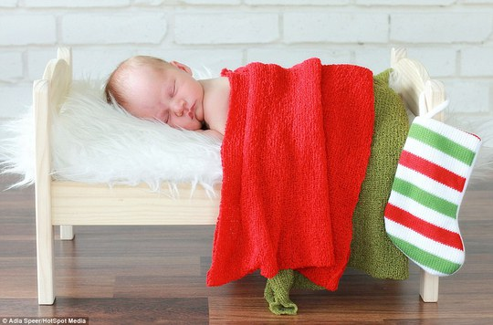 Sawyer, under two weeks old, rests in this Christmas themed bed