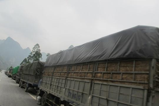 Gần một trăm xe tải, container bị ùn tắc và bị buộc phải dừng xe ở huyện Hữu Lũng (Lạng Sơn), cách cửa khẩu Tân Thanh hơn 80 km