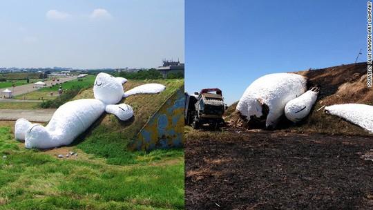 Chú thỏ trước và sau khi gặp hỏa hoạn. Ảnh: CNN