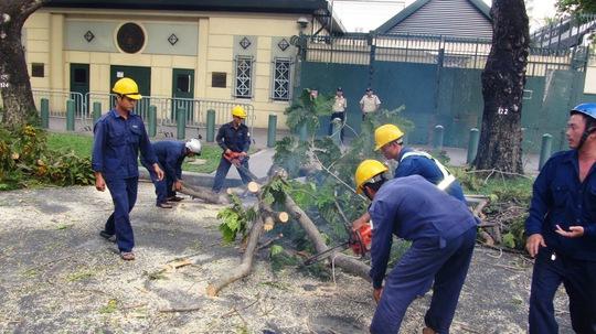 Hiện trường sự cố nhánh cây rơi xuống đường làm hai cô gái bị thương, nhập viện