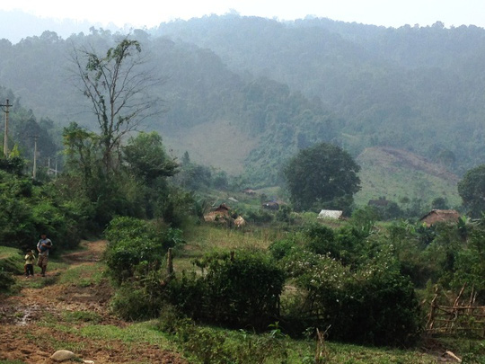 Khu rừng Cây Ngà, nơi các đối tượng hành hung kiểm lâm