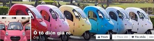 Các loại xe được rao là ôtô điện trên Facebook đảm bảo tiêu chuẩn của ôtô điện - Ảnh chụp màn hình Facebook Ôtô điện giá rẻ