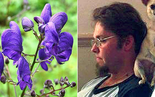 Nathan Greenaway, right, fell ill after handling the deadly flower known as Devil's Helmet, left