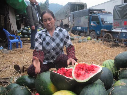 Nhiều dưa hấu đã bị phía Trung Quốc trả lại, không mua nữa do hàng bị chín quá và bị thối, ủng do để lâu ngày